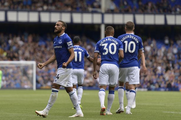 Cenk Tosun celebrates with the Everton fans after scoring a goal in the Premier League.